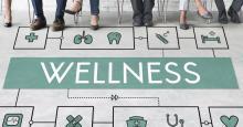 qué es el wellness coach